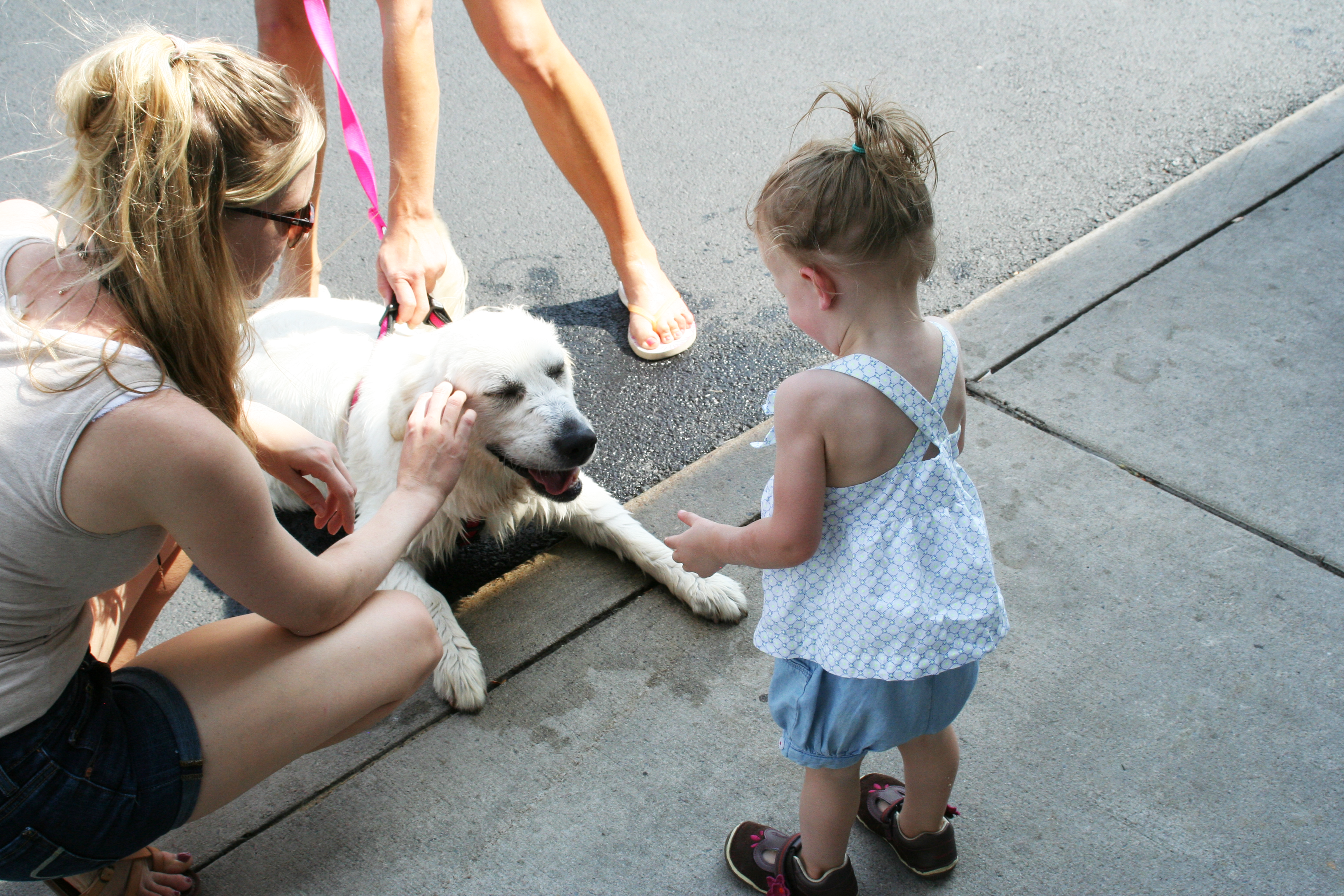 raystown-petting-the-doggie